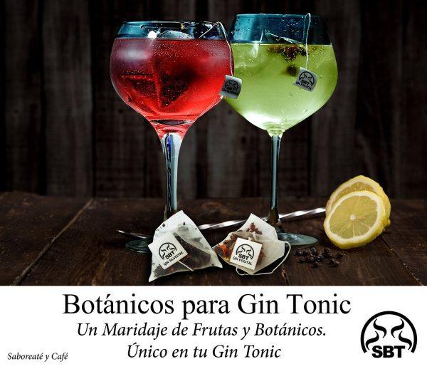 Botánicos Silvestres para Gin Tonic en caja Especias Para Cócteles Set Sabor Frutal 10 Unidades