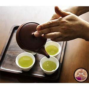 Té Verde Mango y Piña 1 kg.