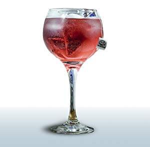 copa cocktail gin tonic botánico piramidal frutas rojas silvestres