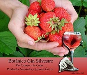 Botánico Gin Silvestre Del Campo a tu Copa.