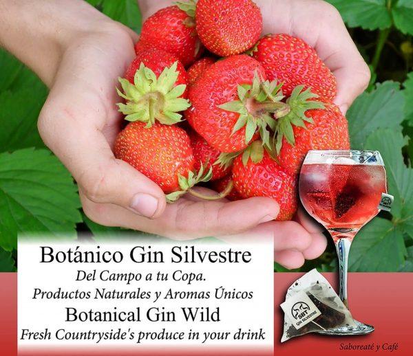 Botánicos Gin Tonic Premium Kit Gift Set Gin Frutas Silvestres 12 Uds.