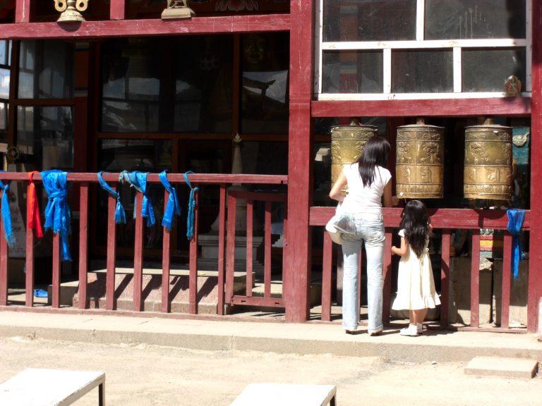 IMG 1543 The Flavour Shop. Tu tienda online de té, café, rooibos e infusiones Saboreaté y Café