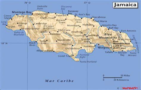 jamaica 2 The Flavour Shop. Tu tienda online de té, café, rooibos e infusiones Saboreaté y Café