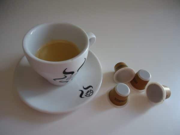 DSC03607 1 scaled The Flavour Shop. Tu tienda online de té, café, rooibos e infusiones Saboreaté y Café
