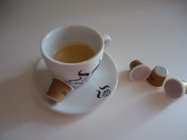 DSC03608 scaled The Flavour Shop. Tu tienda online de té, café, rooibos e infusiones Saboreaté y Café