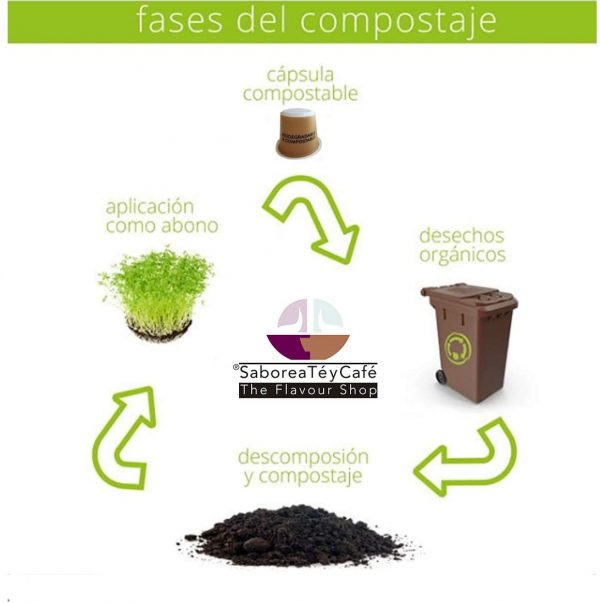 proceso compostable The Flavour Shop. Tu tienda online de té, café, rooibos e infusiones Saboreaté y Café